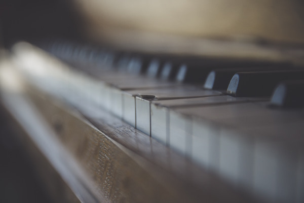 Close-up of piano keys from the side with a broken white one in focus